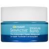 Garnier SkinActive Moisture Bomb The Antioxidant Super Moisturizer