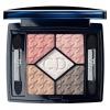 Christian Dior 5-Colour Eyeshadow Palette-744.jpeg