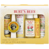 Burt's Bees Head to Toe Starter Kit