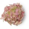 flowers barrow bath oil