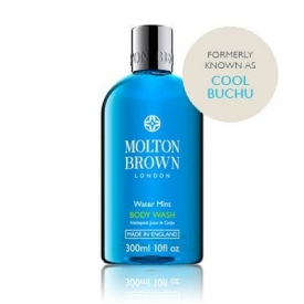 Molton Brown - Water Mint Body Wash (formerly known as cool buchu)