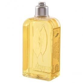 L'Occitane Citrus Verbena Daily Use Shampoo
