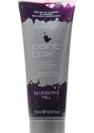 Fudge Paintbox