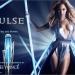 Beyoncé Pulse EDP