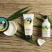 The Body Shop Pinita Colada Exfoliating Cream Body Scrub