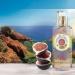 Roger & Gallet Fleur de Figuier Shower Cream
