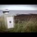 Jo Malone Wood Sage & Sea Salt   bei PARFUMgeflüster